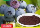 冻干蓝莓粉 果蔬粉冻干食品代工批发 冻干水果粉