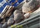 山南20公分大农村铝盆下乡倒锅模具铸铝锅铝锅铝盆铝勺优质商家