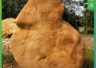 大型黄蜡石 校园纪念石 刻字石 校训刻字石 园林景观石
