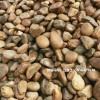 鹅卵石一吨等于多少方 3至5公分鹅卵石 鹅卵石哪里有卖
