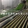 福建全自动毛豆清洗机生产线 安邦制造