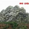 泰山石广东批发原地 雪浪石风景石 各种园林景观石