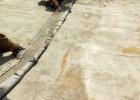 大家都说的水泥毯是什么 混凝土帆布是水泥毯吗