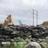各种园林假山案例 英德石 广东精品英石 英石叠石