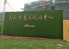 地产公寓围墙草皮建设