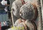 酒泉90公分大下乡倒锅哪里有铝锅模具压铸铝锅在线咨询