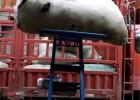 伊春粮食提升机袋装上料机车爬鱼机