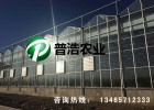 潍坊玻璃温室建设厂家
