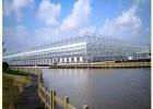 智慧農業大棚的設計 智能化玻璃溫室大棚 全自動玻璃溫室大棚
