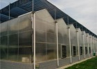 pc板温室大棚建设 阳光板大棚工程承建 纹洛型塑料板温室搭建