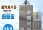 新能源设备旭恩生物质节能环保蒸汽发生器报价