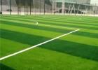 人造草坪仿真草坪休闲运动草坪学校幼儿园草坪