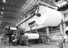 一般加拿大纸浆进口的贸易方式有哪些