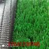 绿美亚人造草坪运动草足球场草坪学校草坪