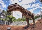 恐龙模型出租 专业承接各类展会展览 恐龙展出租