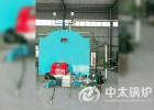 4吨燃气蒸汽锅炉 中太锅炉直供