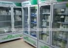 广西医用药品冷藏柜专卖店在哪