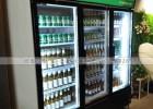 湖南两门立式冷藏展示柜什么牌子质量好