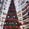 春节将至圣诞树制作厂家圣诞树出租出售圣诞树出租租赁