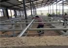 奶牛场专用牛卧床