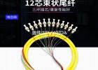 广电级12芯束状尾纤