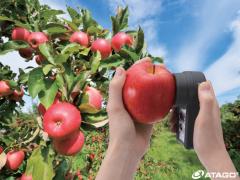 日本ATAGO爱拓水果手持式无损糖度计PAL-HIKARi5