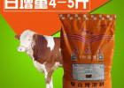 育肥期肉牛养殖技术