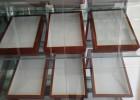 供应昆虫标本盒及二次针插软木块/标本盒系列/现货