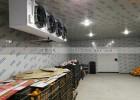 浙江做一个水果冷库需要多少钱