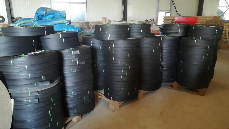 钢塑复合拉筋带30020C 泸州塑钢复合土工筋带指标
