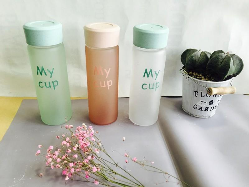 玻璃杯 玻璃壶 花茶杯 果汁杯 咖啡杯 奶茶杯生产批发