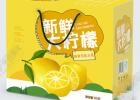 琼海荔枝快递箱款式新颖_琼海柠檬彩盒在线咨询