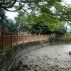 高要水泥仿木栏杆维护方便、使用年限长