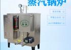 蒸汽发生器安装的设计方案