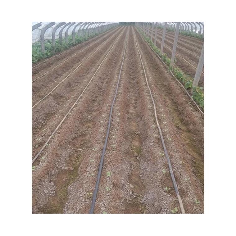 甘肃临夏康乐县节水滴灌用软带水带生产厂家