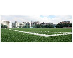 广州市绿城体育设施有限公司