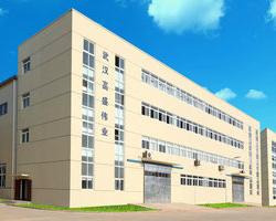 武汉市高盛伟业电子科技有限公司
