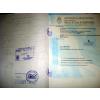 供应怎么办理阿根廷使馆认证