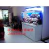 供应杭州订做鱼缸 专业订做鱼缸 海鲜池 水族箱 大型海水缸