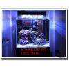 供应杭州饭店鱼缸 专业订制各种鱼缸 日晟鱼缸树立国际品牌!