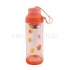 杭州供应带茶隔 塑料盖玻璃杯 透明茶杯 双层保温杯 300ML 儿童水杯