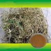 供应水杨甙 白柳皮提取物