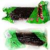 黑玉米甜糯玉米穗 厦门玉米批发 供应黑色玉米养生杂粮黑色食品
