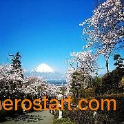 深圳日本旅游包团价格及景点线路攻略,日本本州北海道温泉七天游feflaewafe