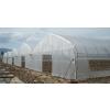 供应大棚建设蔬菜温室建造石家庄大棚建造工程处
