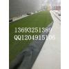 供应北京幼儿园假草坪出售