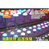 供应清清LED豆胆灯LED厂家直销LED生产厂家LED照明
