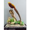 供应鱼类标本制作_动物标本