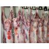 供应特价羊肉