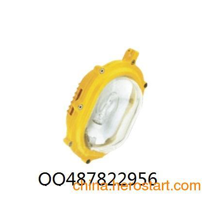 供应IW5110固态泛光防爆头灯